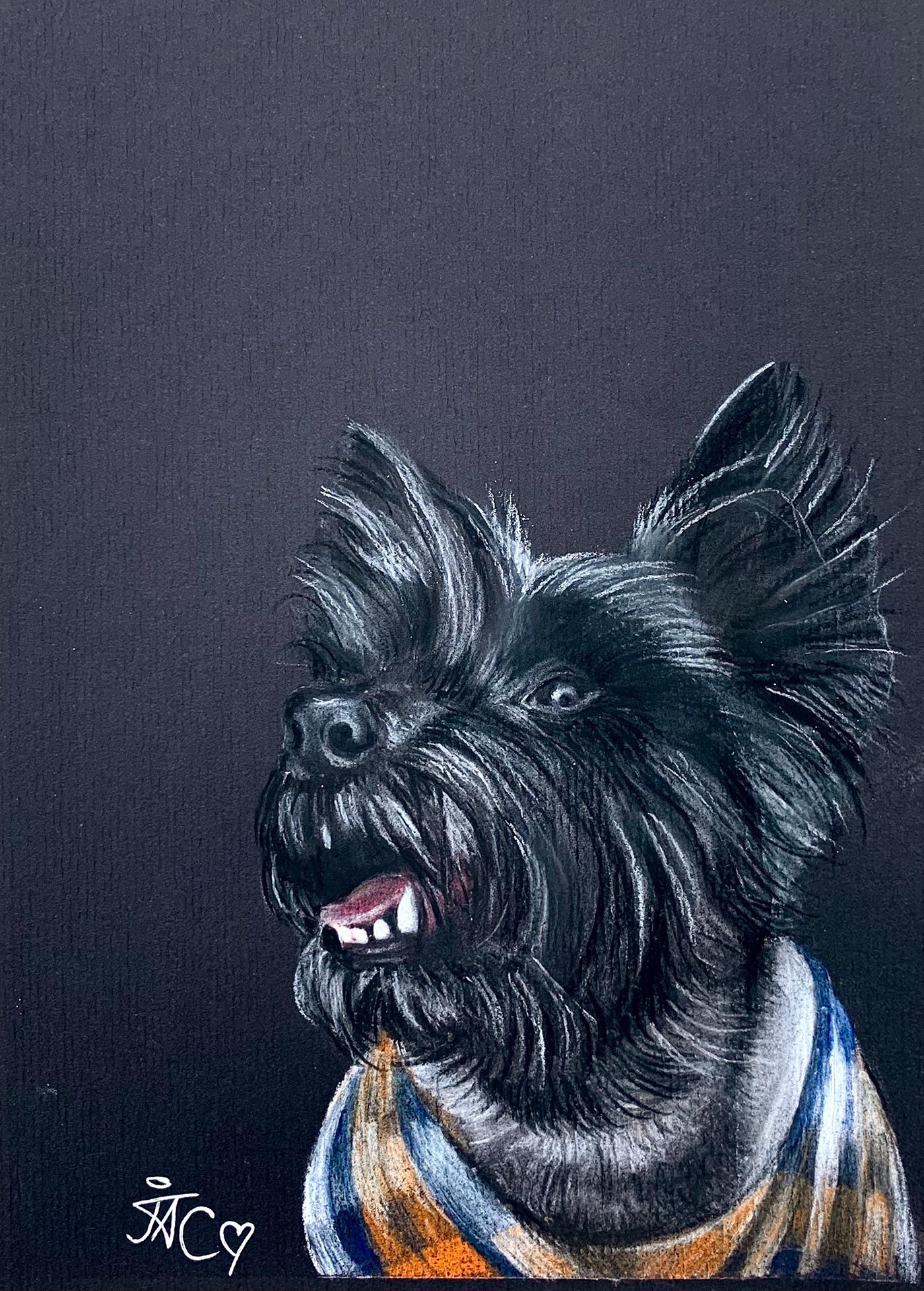 Cat dog family hand drawn Hand Painted horse paint Painted pastel pencil Pet pony portrait rabbit