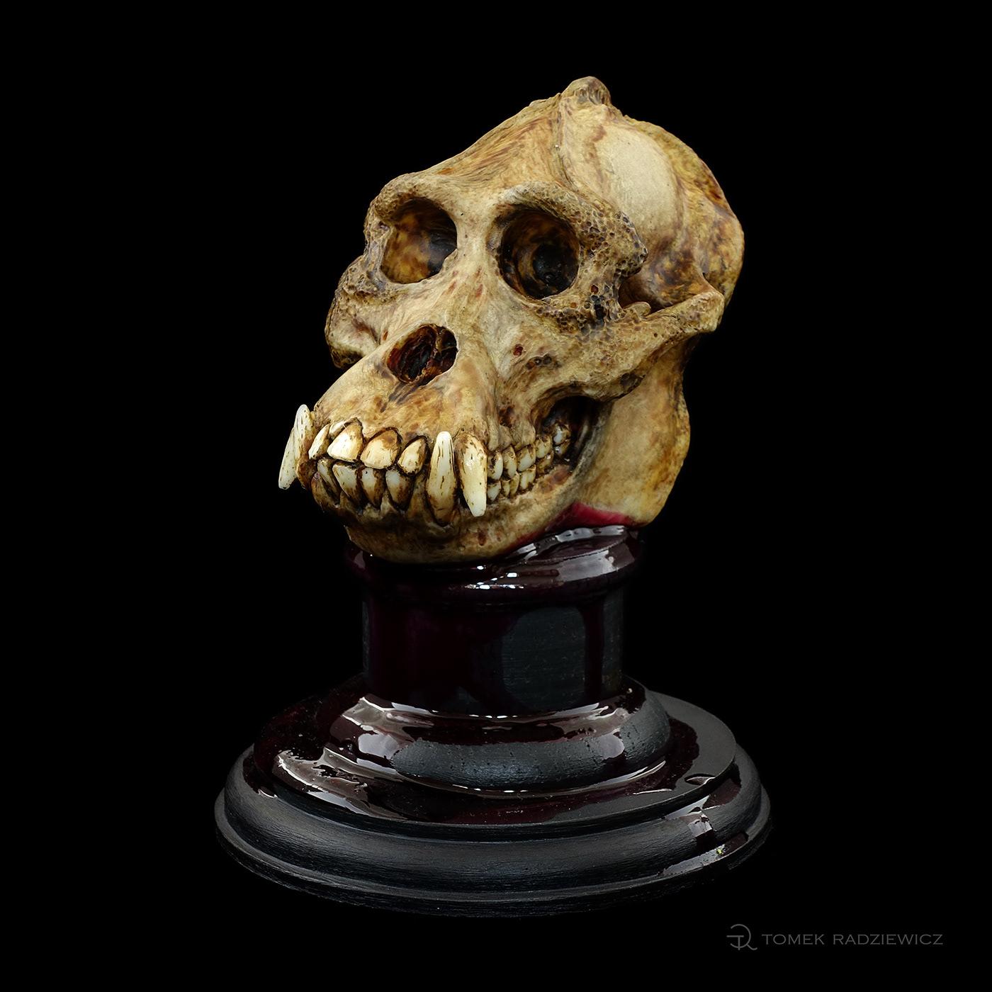 characterdesign orangutan sculpture skull