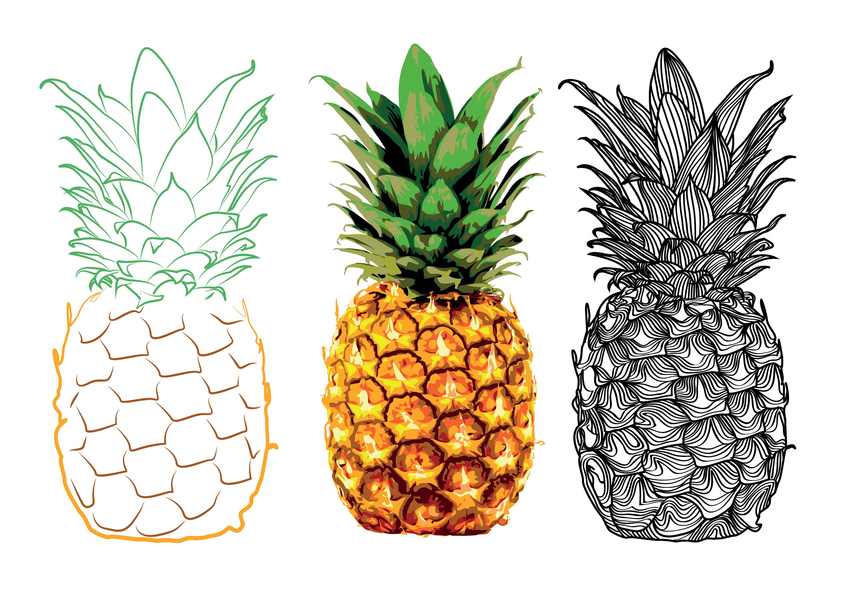 Картинки нарисованного ананаса