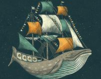 Whale   Petrol Grey