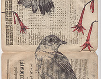 'all flames burn and return' bic biro drawing on a...