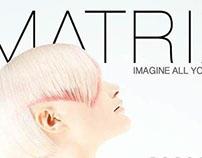 App Design: L'Oreal Matrix B2B booklet