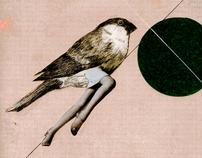 human birds part II