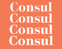 Consul® A 48 Font Optically Sized Design
