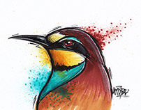 Illustrated birds