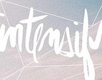 INTENSIFY 2013