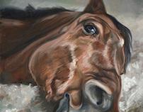 Equine~Heart Paintings