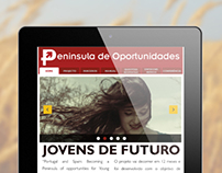 Web Design   Península