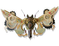 Meter Moth