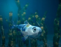 "COOP ""Underwater World 2013"""