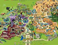 Lowry Park Zoo, Florida