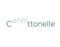 Cottonelle Communications Strategy
