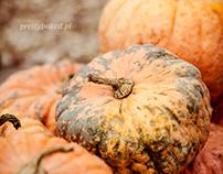 JEdynie - pumpkin farm :)