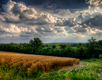 Summer Up on Raptor Ridge | Home in Ohio