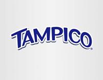 Caso: Tampiko copia Tampico