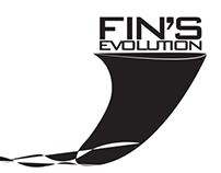 Fin's evolution