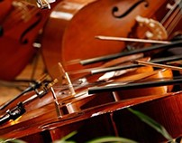 Orchestral and Chamber music