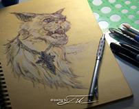 My Sketch Book1