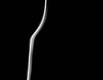 Light Form