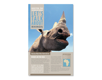 Black Rhino Conservation Poster