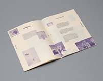 Craft Victoria 2012 Annual Report