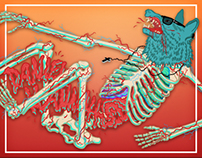 Skeletton Wolf 2010 + 2013