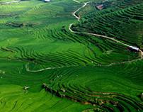 Hmong people -Vietnam-