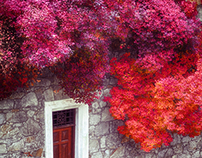 Some wonderful colors...