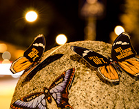 The Butterfly Effect // Street Edition