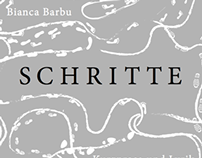 Schritte - book cover