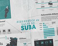 """Infografía y periódico """"Estado de salud de suba"""""""