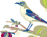 Brunswick Review illustrations
