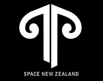 Air New Zealand: Group Project