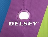 DELSEY - WEBSITE