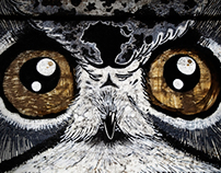 The Owl Look