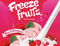 Freeze fruits Ice cream