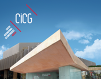 Corporate identity of the CICG