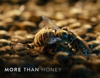 MORE THAN HONEY – Main Title Design