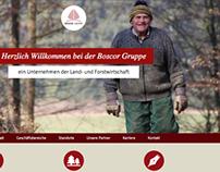 Boscor Website
