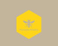 BEE Project / Pszczoła Miodna / infographics