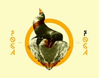 Foca Design