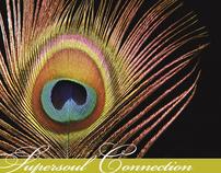 Supersoul Connection