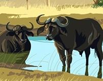 Wildlife Travel Posters