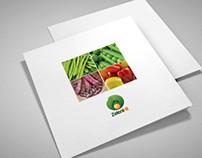 Square tri fold brochure design