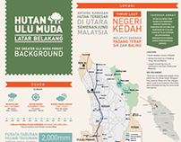 The Greater Ulu Muda Forest
