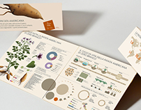 Infodesign for local agricolture