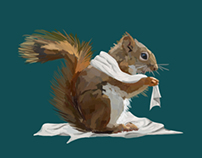 Squirrel and the Bedsheets