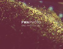 5 FWA Photos