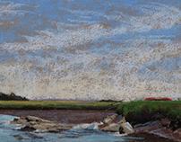 A Marsh-Eye View. Essex