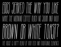 Tall Handwritten Typeface